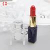 Lipstick DIY Mold Makeup