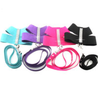 Leash for Chihuahua Small Medium Animal